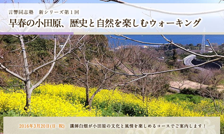 言響同志塾早春の小田原、歴史と自然を楽しむウォーキング