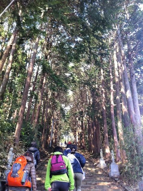 長興山への道イメージ